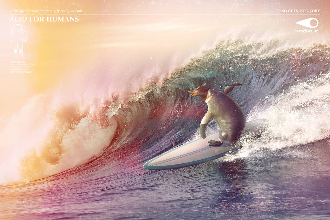 Animals surfing the waves